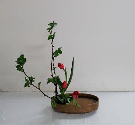2020.2.12 <芽出し木苺 チューリップ> Rikuくんの作品です。研究会のお稽古です。直立型。