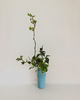 4/24 <芽出し木苺 芍薬 鳴子百合> Tamikoさんの作品です。