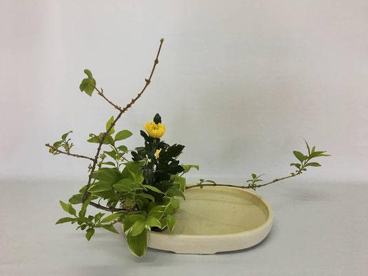 <連翹 中菊 鳴子百合> Kumikoさんの作品です。 中菊を野の花に見立てて写景盛花のお稽古です。