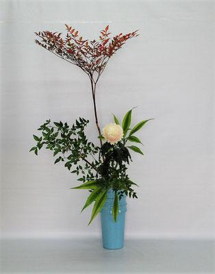 2020.12.22 <南天(ナンテン) 菊(アナスタシア) ドラセナサンデリアーナ> Tamikoさんの作品です。