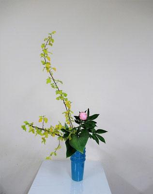 2020.6.3 <金葉こでまり 芍薬 擬宝珠(ギボウシ)> Atsukoさんの作品です。