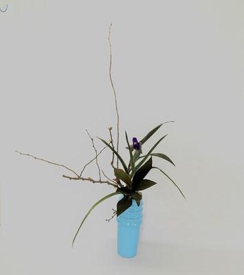 4/17 <木瓜 ダッチアイリス 赤ドラセナ> Tamikoさんの作品です。