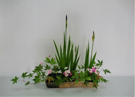 2019.7.2 <燕子花(カキツバタ) 撫子(ナデシコ) フウロソウ 鳴子百合 紅葉 > Kumikoさんの作品です。燕子花を取り合わせた琳派調いけばなのお稽古です。届いた燕子花の花茎が直線的でしたので、表情を作りにくかったようです。でも、織部焼の花器にいけてもらいましたので雰囲気が出たと思います。