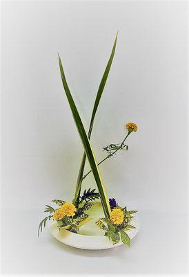 <ニューサイラン マリーゴールド スターチス ゴッドセフィアナ> Tamikoさんの作品です。