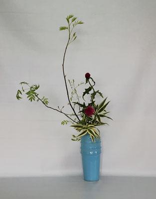 <芽出しナナカマド 薊(アザミ) ドラセナ・サンデリアーナ> Tamikoさんの作品です。