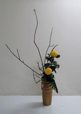 2021.2.3 <梅 ピンポン菊 カラティア> Katsurakoさんの作品です。