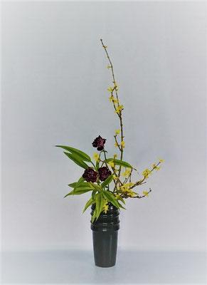 <連翹 カーネーション ドラセナ・サンデリアーナ> Tamikoさんの作品です。
