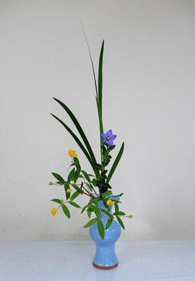 2020.6.10 <花菖蒲(葉のみ) 桔梗(キキョウ) 未央柳(ミオウヤナギ)> 蓮葉口花瓶に小品花のお稽古、Atsukoさんの作品です。