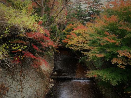 有馬温泉。日本の三大古湯の温泉として有名。秀吉の正妻の名をつけた「ねね橋」から撮影。
