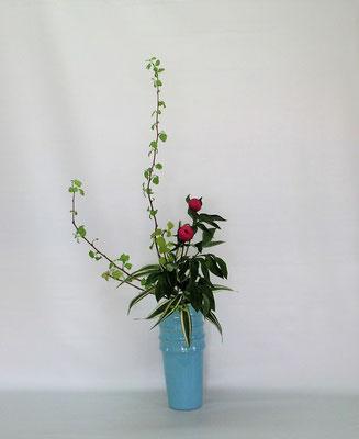 2021.4.27 <金葉コデマリ 芍薬 ドラセナサンデリアーナ> Tamikoさんの作品です。金葉コデマリは黄葉コデマリと呼ぶ人もいます。