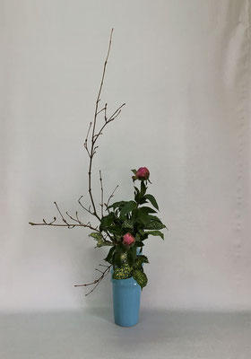 <オタルモミジ 芍薬 ゴッドセフィアナ> Tamikoさんの作品です。
