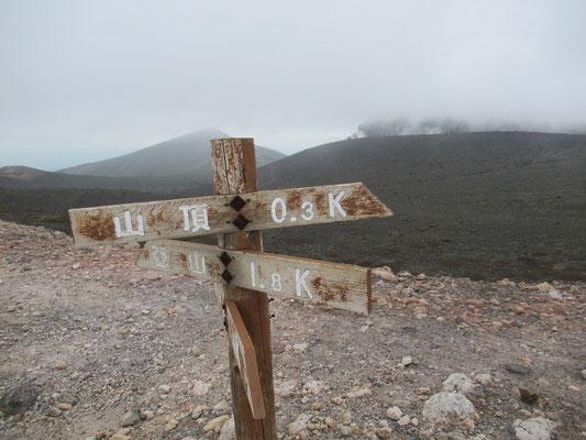 噴煙をあげる溶岩ドームをバックに。でも、ガスがかかるとこの標識さえ見えなくなるので、気象次第では気の抜けない山です。