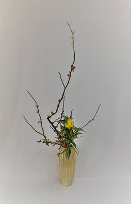 <木瓜 ダッチアイリス ドラセナ・サンデリアーナ>  Atsukoさんの作品です。 レモンイエローのアイリスが旬です。