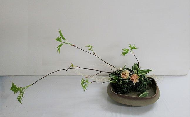2020.2.19 <芽出しナナカマド カーネーション ドラセナサンデリアーナ 晒しほうき草 パセリ> Rikuくんの作品です。今回は、花材を見て自分の作品の物語を考えて表現してもらいました。凄いです!