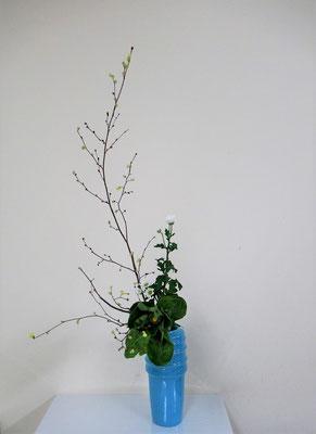 2020.2.5 <土佐水木 金盞花(キンセンカ) 小菊> Atsukoさんの作品です。金盞花はカレンデュラという名前でお花屋さんに流通してことがあります。