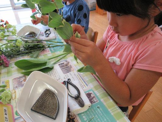 鳴子百合は葉の根元に花が散った後の短い茎が残っていますので、丁寧に取り除きます。