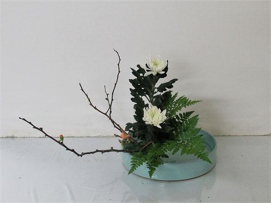 2021.2.17 <木瓜(ボケ) 中菊 レザーファン> Katsurakoさんの作品です。傾斜型のお稽古です。