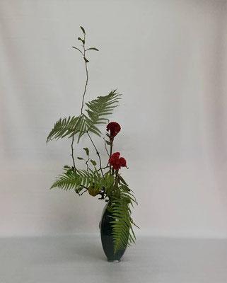 2018.10.9 <実木瓜 鶏頭 裏白> Tamikoさんの作品です。文人調のお花。北海道ではなかなか手に入らない裏白を使って軽やかな動きを意識していけてもらいました。