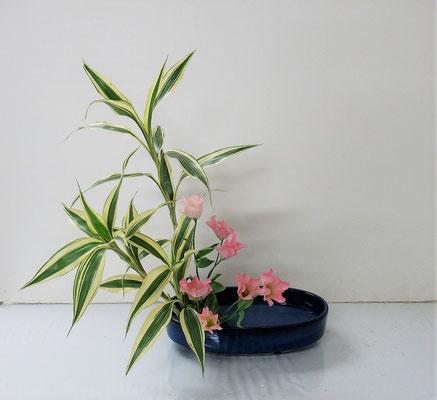 2021.5.12 <竹ドラセナ トルコ桔梗> Rikuくんの作品です。5月研究会の課題をお稽古しました。