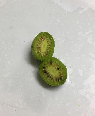 半分に切ると、ほら果物のキウイフルーツにそっくり。味も勿論似ています。