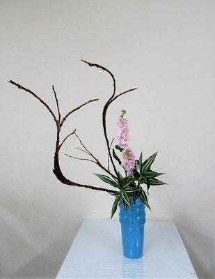 2020.12.9 <石化柳(セッカヤナギ) ストック ドラセナ> Rikuくんの作品です。大きな枝をダイナミックにいけられましたね。