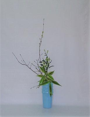 2019.5.14 <オタルモミジ アルストロメリア ドラセナ・サンデリアーナ> Tamikoさんの作品です。枝のボリューム感とアルストロメリアの分量にも配慮していけたそうです。