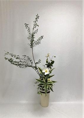 <雪柳 秋明菊(シュウメイギク) ドラセナ・サンデリアーナ> Atsukoさんの作品です。