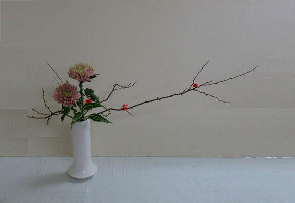 2019.12.11 <木瓜(ボケ) アナスタシア ドラセナサンデリアーナ> Seiさんの作品です。木瓜の伸びやかさを意識して。木瓜の花の可愛らしさに魅かれたようです。