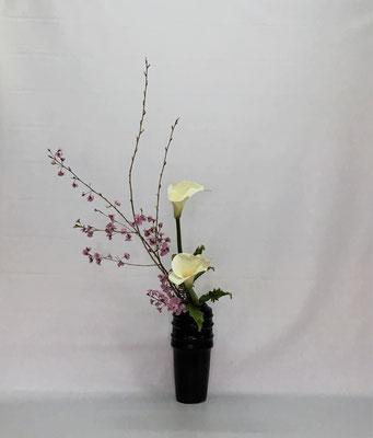 2019.4.23 <桜 カラー 玉しだ> Chiakiさんの作品です。