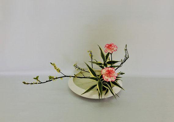 <青文字(アオモジ) カーネーション ドラセナ・サンデリアーナ> Tamikoさんの作品です。