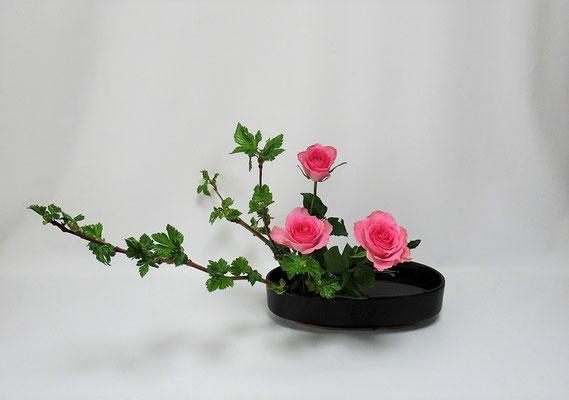 2021.3.23 <芽出し木苺 薔薇(バラ)> 3月研究会の課題をお稽古しました。Kayoさんの作品です。