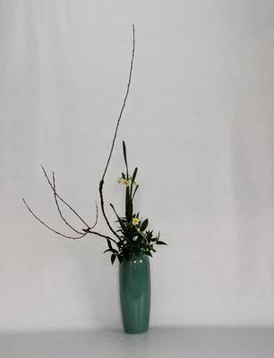 <石化柳 水仙 笹葉ルスカス> Kazukoさんの作品です。
