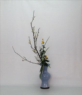2021.1.19 <梅 小菊 キキョウラン> Kumikoさんの作品です。