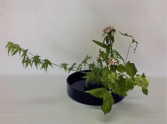 5/29<オタルモミジ 撫子 紫陽花> Tamikoさんの作品です。