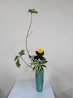 2020.1.22 <芽出し木苺 ピンポン菊 ドラセナサンデリアーナ> Atsukoさんの作品です。