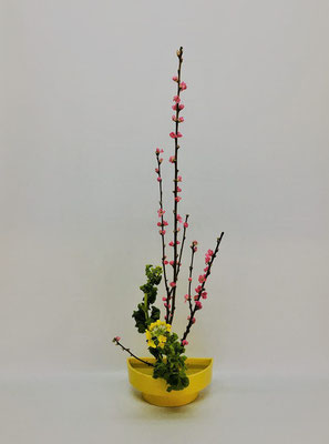 3/13<桃 菜の花> Chiakiさんの作品です。