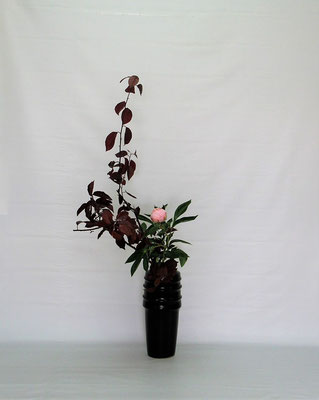<紅李(ベニスモモ) 芍薬(シャクヤク)> Tamikoさんの作品です。ベニスモモの葉を思い切り整理しました。取合せには小菊も入っていましたが、あえて二種にしてスッキリといけてみました。