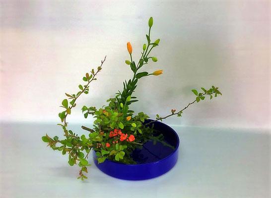 <木瓜 オレンジココット 日蔭> ココットは小振りの透かし百合。野の花に見立てて写景盛花のお稽古をしました。Kazukoさんの作品です。