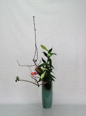 2020.12.1 <花木瓜 鉄砲百合 青ドラセナ> Kumikoさんの作品です。研究会の課題をお稽古しました。