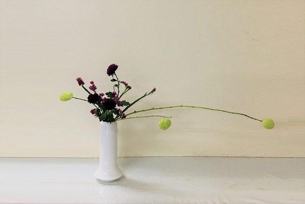 2018.11.7 <フウセントウワタ 菊 スターチス> Akikoさんの作品です。初めて瓶にいけました。