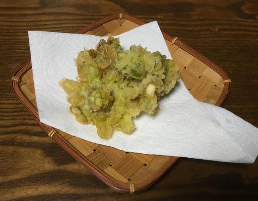 フキノトウの天ぷら。