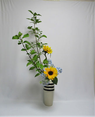 2020.5.21 <珊瑚水木 向日葵(ヒマワリ) デルフィニウム> Kayoさんの作品です。