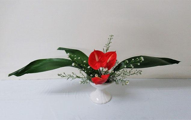 2020.9.16 <旭葉蘭(アサヒハラン) アンスリウム 孔雀草(クジャクソウ)> Ittuちゃんの作品です。ひらくかたちは得意な花型です。