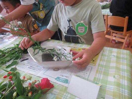 器の大きさに応じて花の長さを測ります。