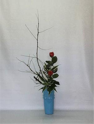 <エンジュ 薔薇 ドラセナ・サンデリアーナ > Tamikoさんの作品です。