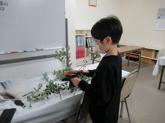 『花舞』のお稽古の後は、花材を見て他の花型にいけ直しているRikuくん。