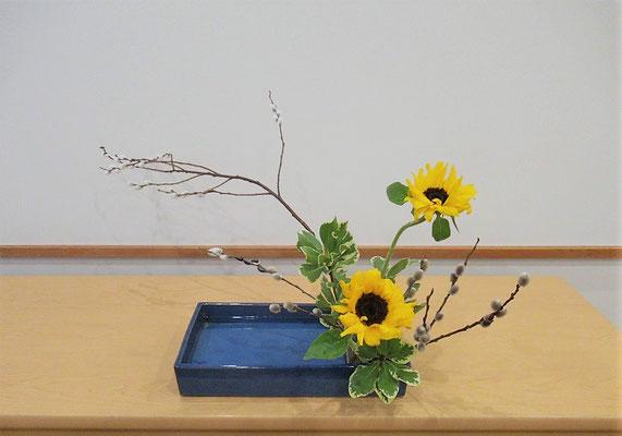 <バッコ柳 向日葵(ヒマワリ) 大葉ピットスポラム> Katsurakoさんの作品です。かたむけるかたち一作目。