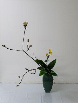 2020.4.8 <コブシ 小菊 ドラセナ> Hirokoさんの作品です。華奢な感じはしますが野趣あふれるコブシを皹寧窯礎瓶に小品花のお稽古です。