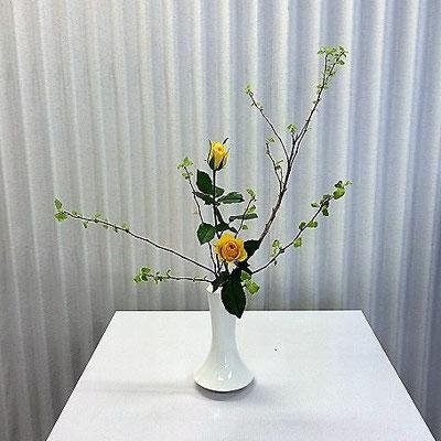 Ayanoさんの作品です。