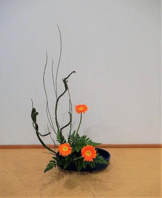 <石化エニシダ ガーベラ レザーファン> Natsumiさんの作品です。盛花の基本、直立型を小判型水盤に。